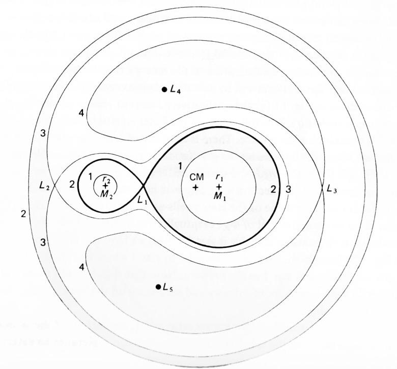 Los lóbulos de roche están marcados en negrita, y forman una especie de signo de infinito. Fuente: Accretion Power in Astrophysic